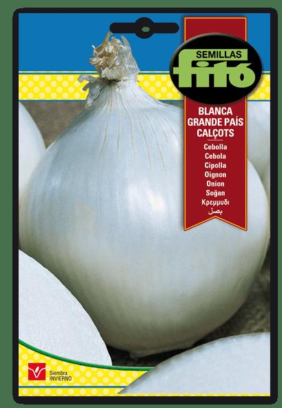 Cebolla Blanca Grande País Calçots