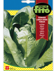 Lechuga Romana Larga Verde
