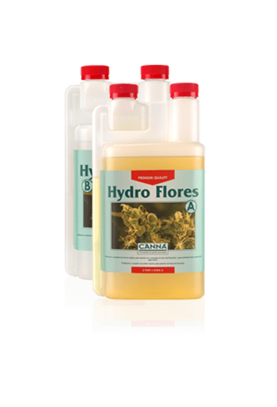 Hydro Flores