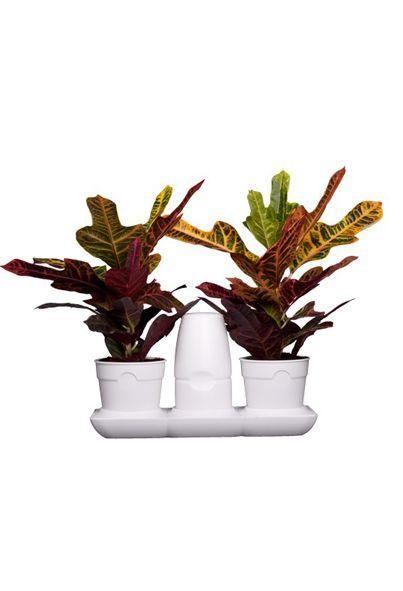 minigarden-basic-s-pots