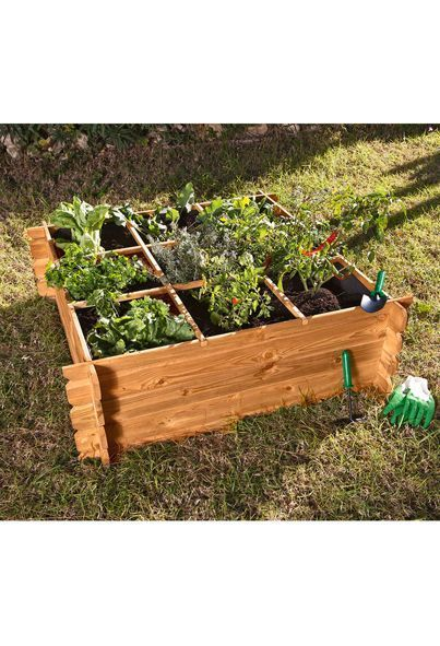 Catral Seed Planter