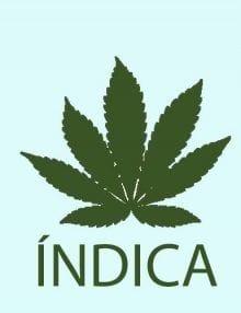 Regulares Índica