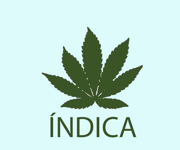 Índica