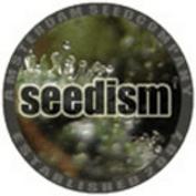 Seedism Seeds
