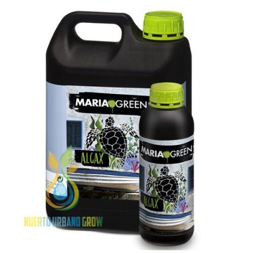 Algax Maria Green