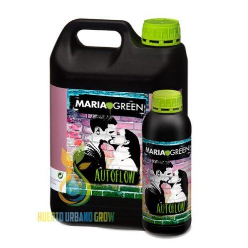 Autoflow Maria Green