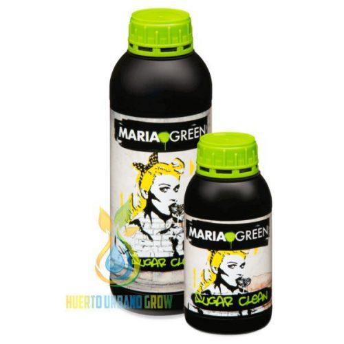 Sabor Maria Green