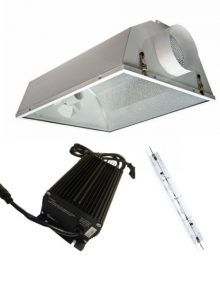 Kit LEC Solux PRO 315 W con reflector ACR-6S