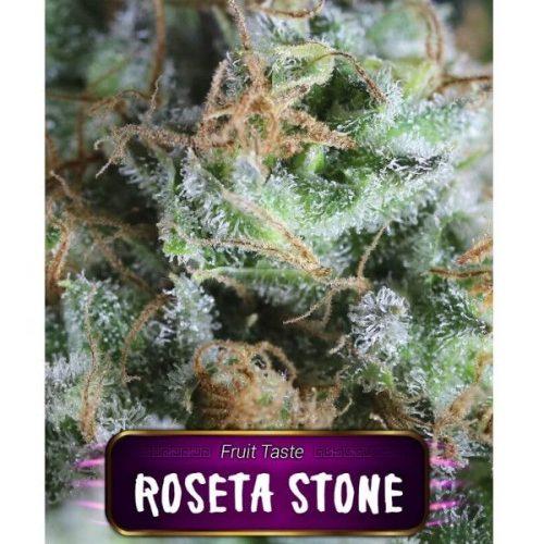 Semillas de marihuana Roseta Stone de Gea Seeds