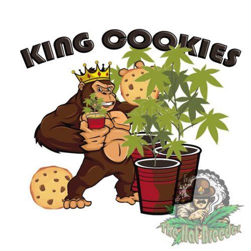 King-Cookies-The-Hat-Breeder