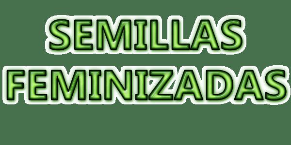 The Hat Breeder - Semillas feminizadas