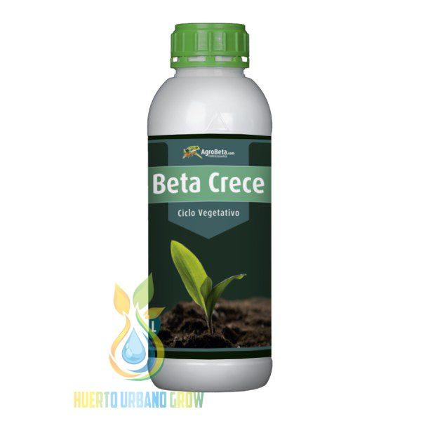 Agrobeta Beta Crece