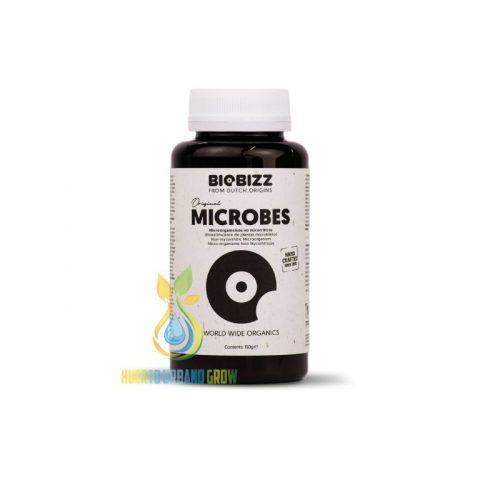 Biobizz Microbes